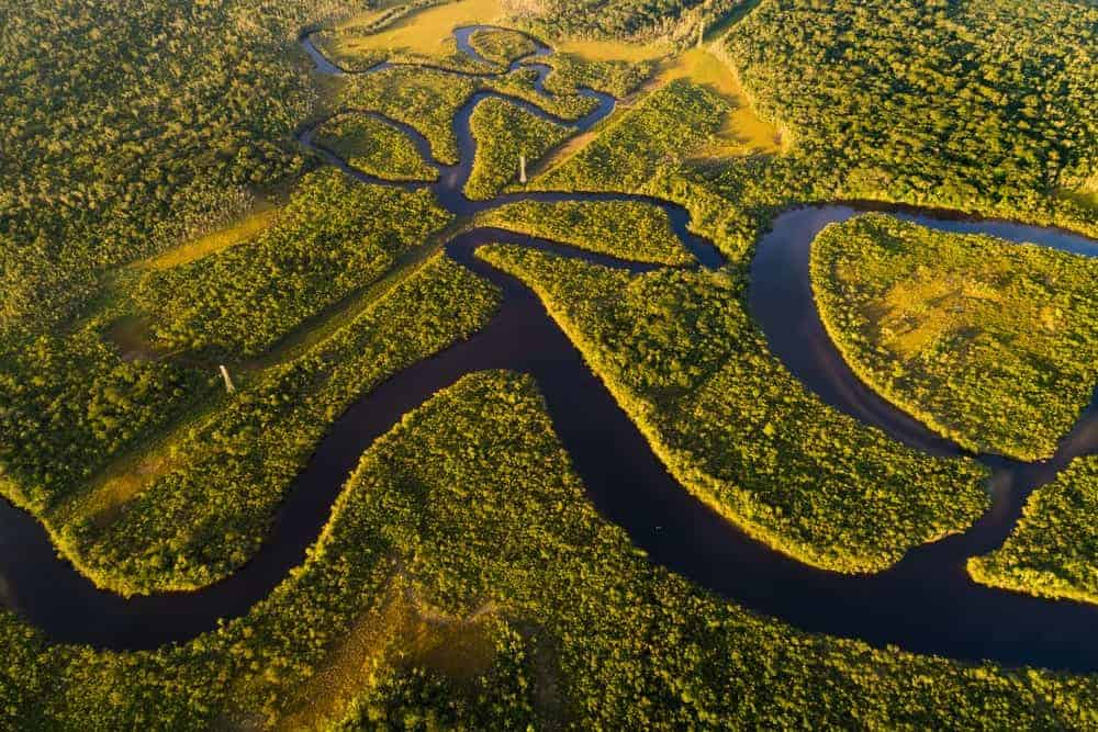 Aerial view of the Amazon river and the surrounding rainforest.