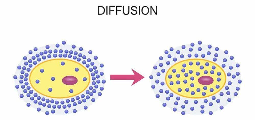 Illustration of Diffusion