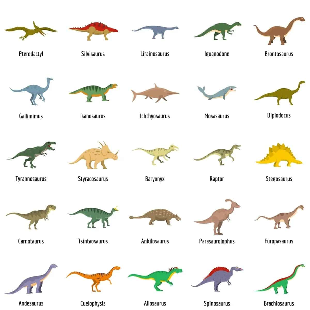Types of dinosaurs chart
