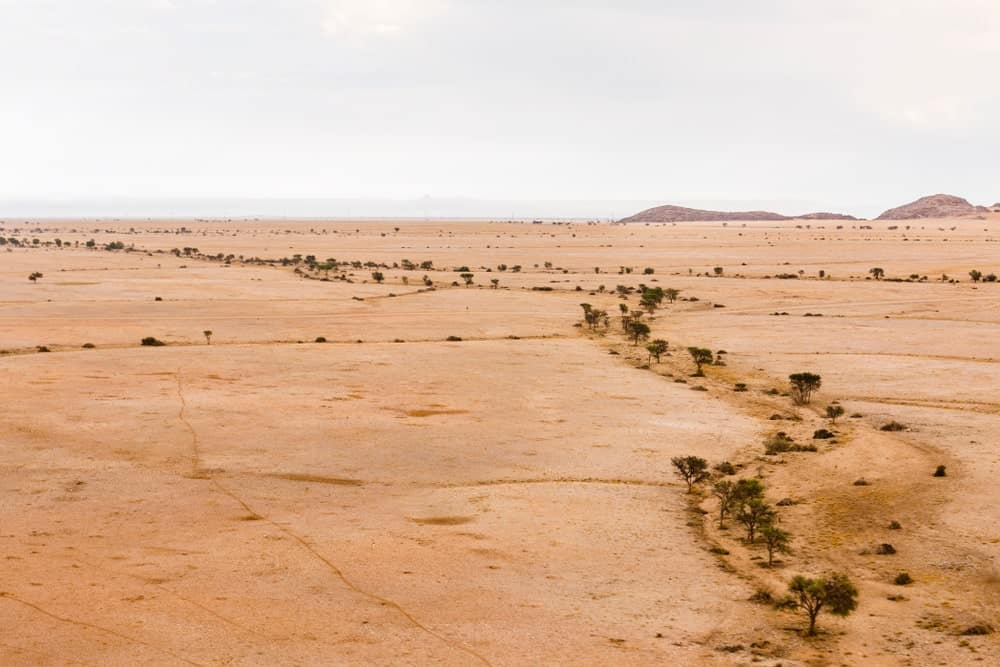 Dried up ephemeral river on a desert.