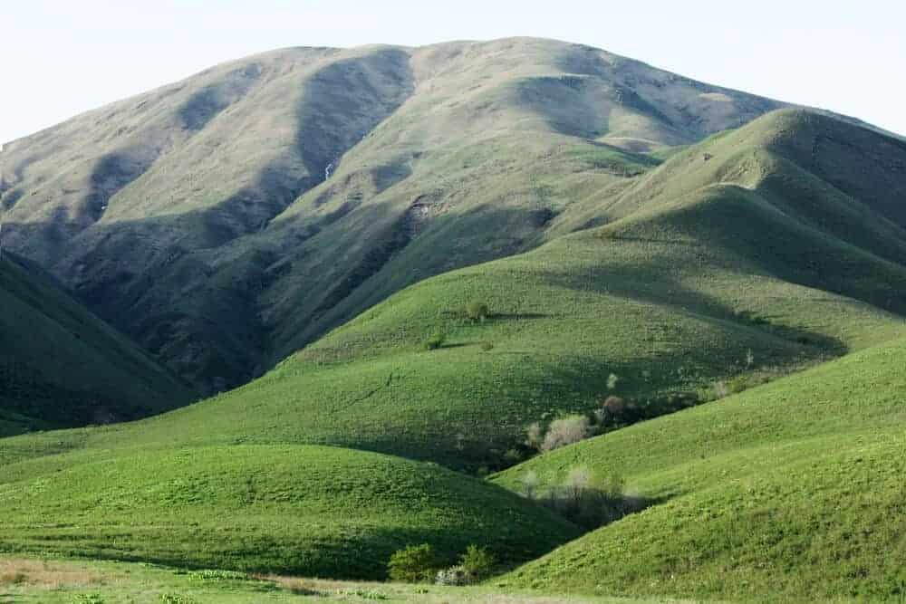 Green Hills in Kazakhstan.