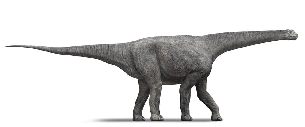 Lirainosaurus dinosaur