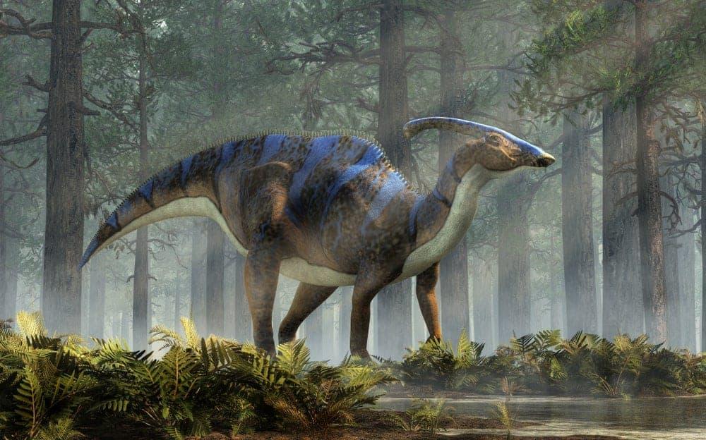 Blue Parasaurolophus dinosaur