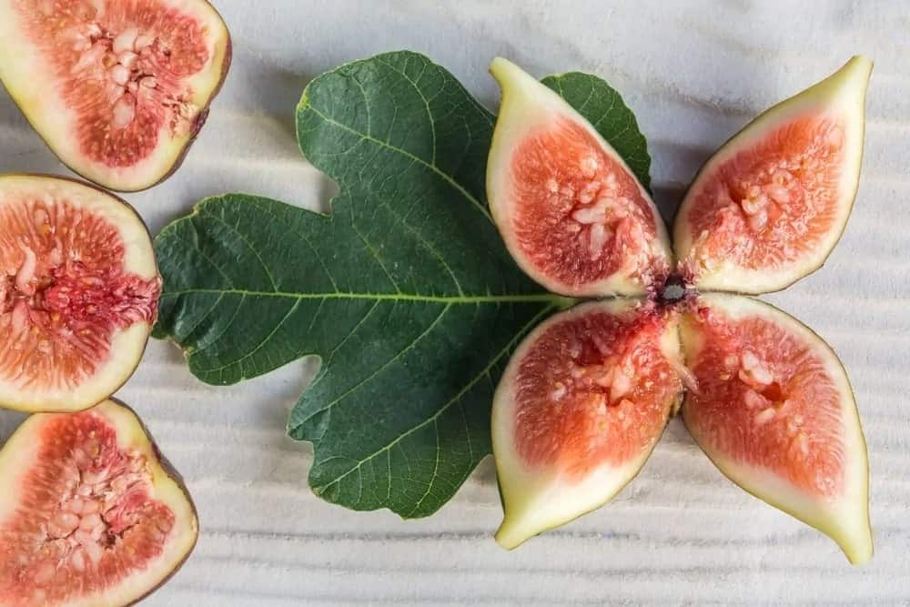Fruit slices of a Purple Genca fig tree