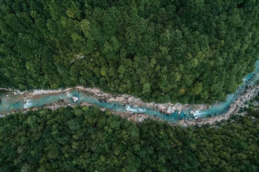 Aerial view of a river flowing along the rainforest.