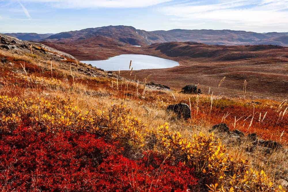 Autumn Tundra with lakes and mountains in the background.