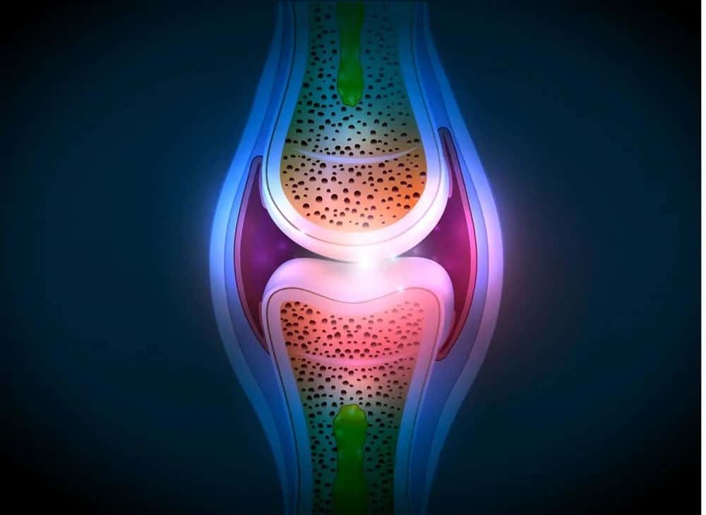 Visual representation of a synovial joint.