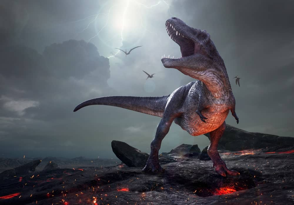 T-Rex roaring on a volcanic mountain.