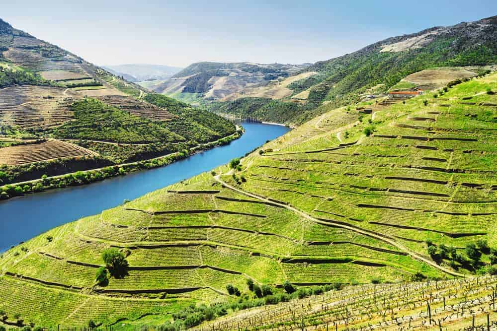 Green, landscape view of the Douro Valley.