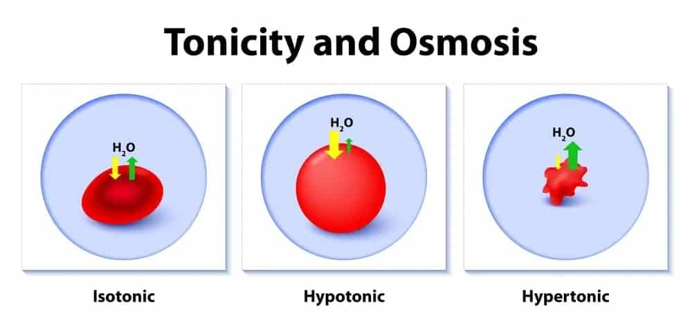 Illustration of tonicity and osmosis.