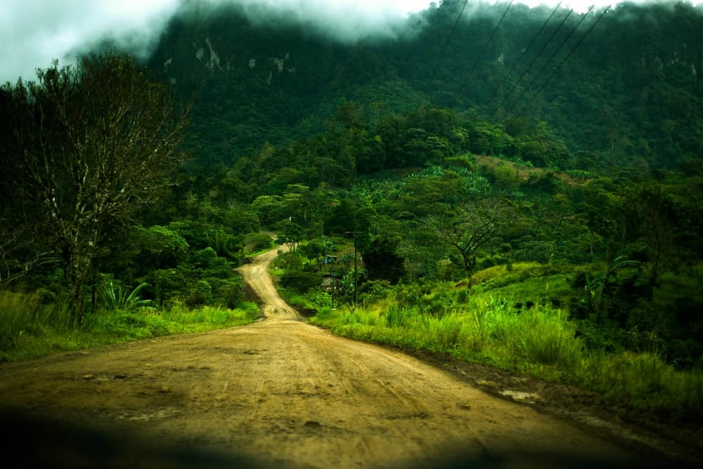 A dirt road leading to the Bosawas Biosphere Reserve.