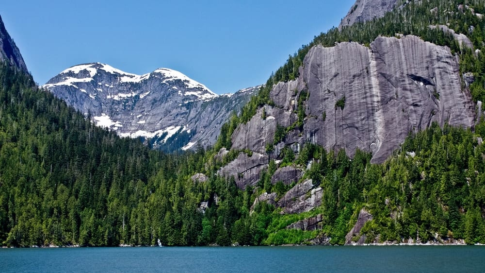 A view of the snowy mountains and the Tongass National Forest.