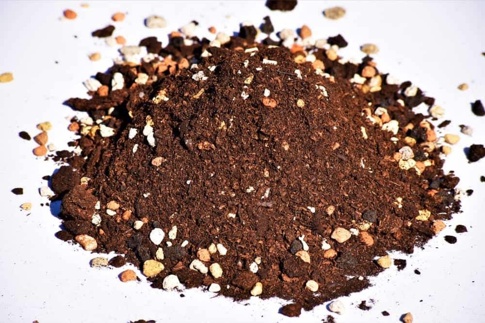 A bonsai soil mix containing sterilized soil, peat, pumice, grit, akadama, and other ingredients.