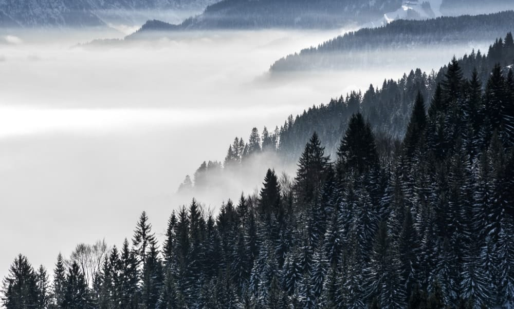 This is an aerial view of a foggy valley.